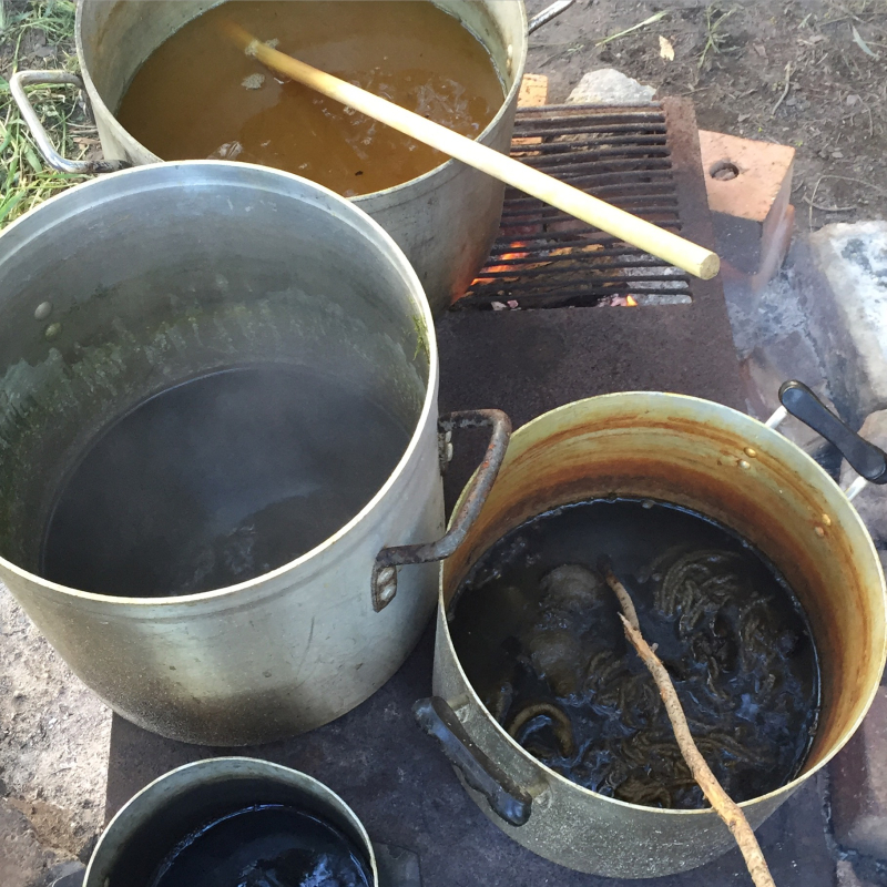 IP - NAtural Dyeing