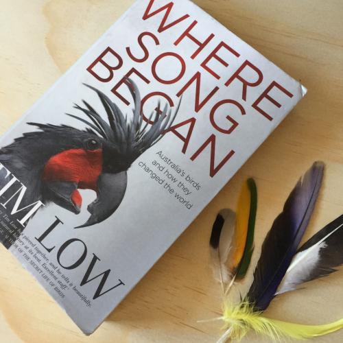 IP - Bird Books 4