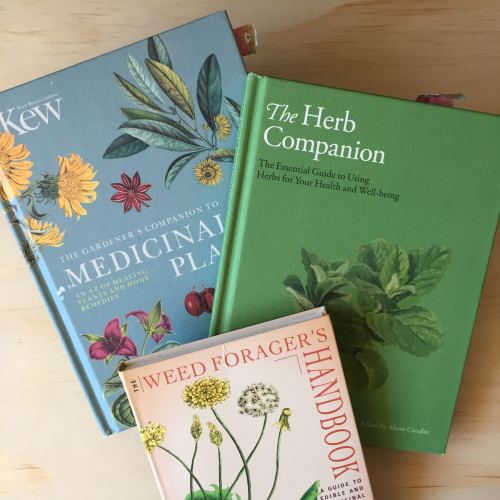 IP - Plant Book 1