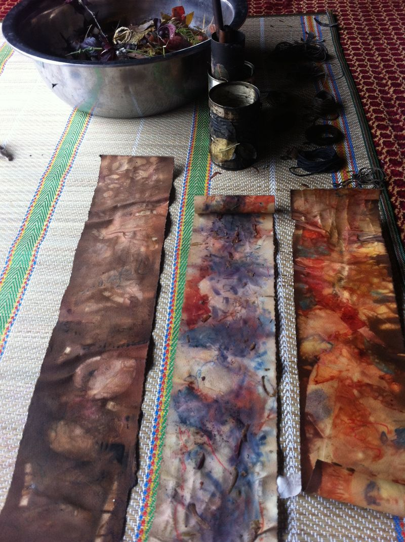 IP - Eco dyeing 5