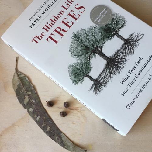 IP - Tree Books 4