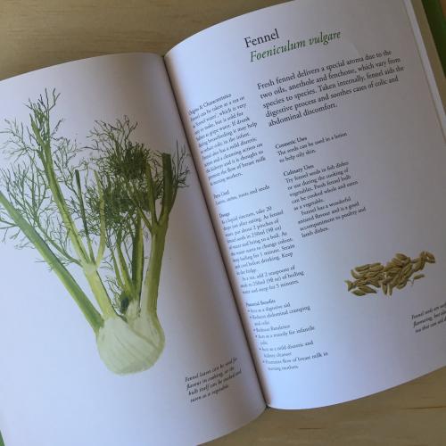 IP - Plant Book 2