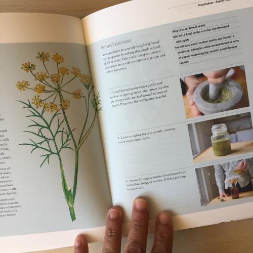 IP - Plant Book 3