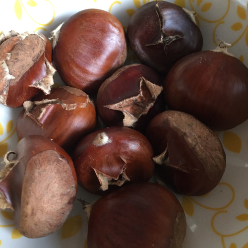 IP - Chestnuts 2