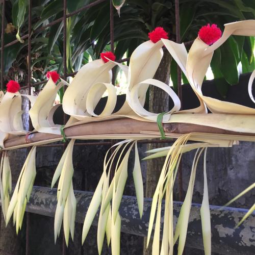 IP - Bali 8