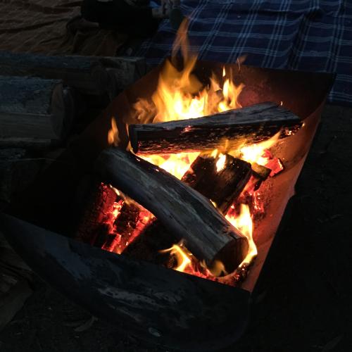 IP - Camp 11