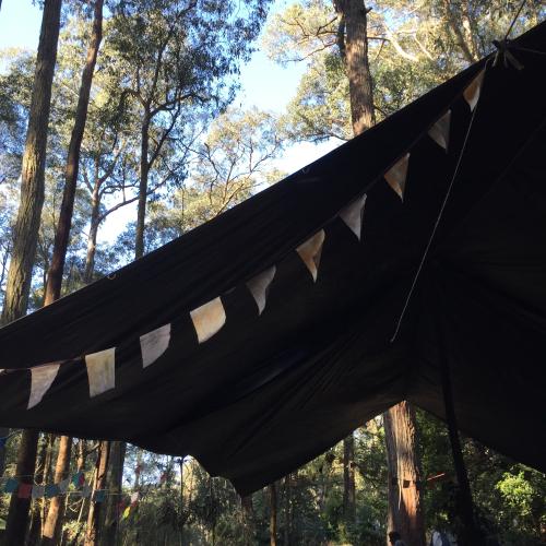IP - Camp 1