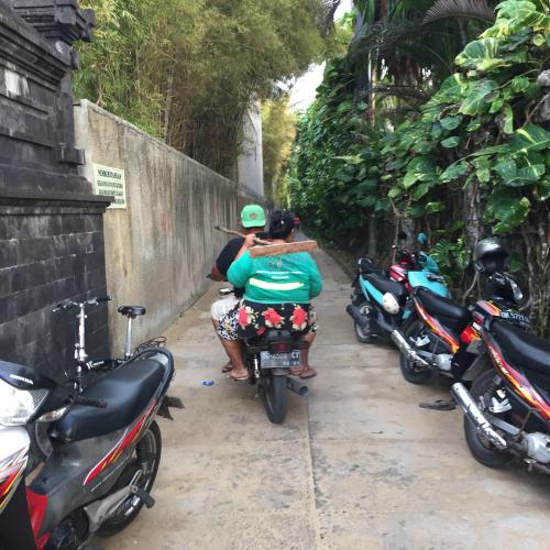 IP - Bali 21