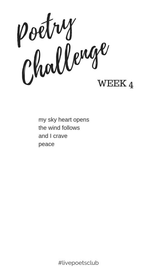 IP Poetry Challenge Week 4 Poem