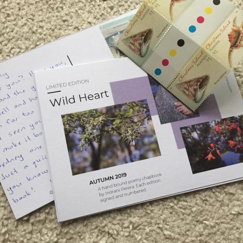 Wild Heart 1