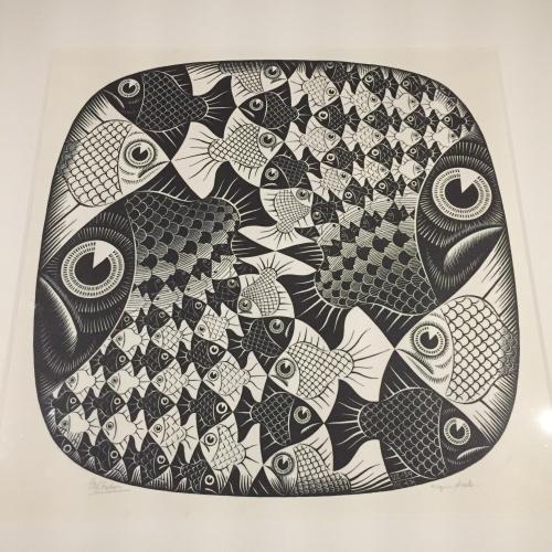 IP - Escher 8
