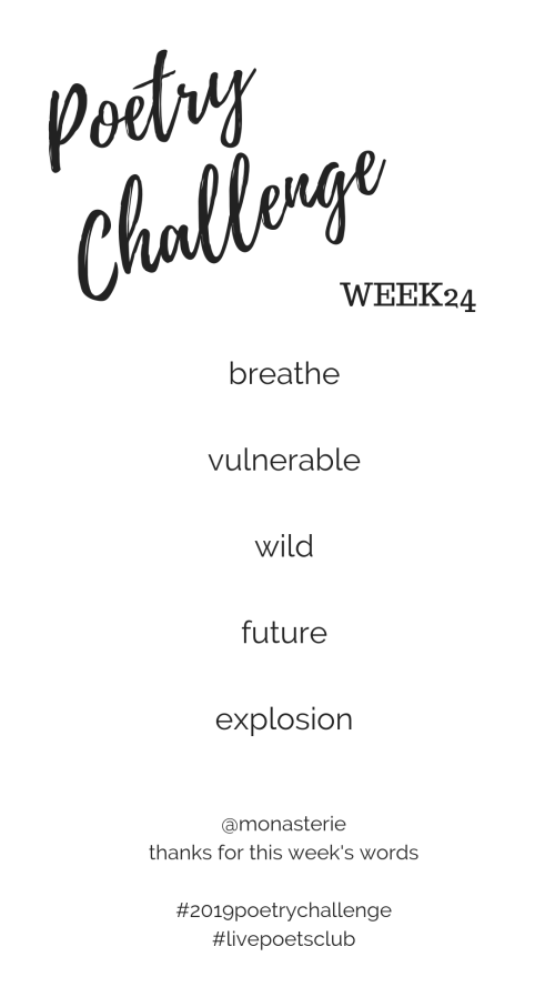 Poetry Challenge 2019 - Week 24 Words