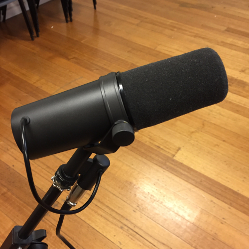 IP - Mastering the Microphone 3
