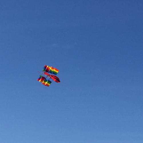 IP - Kite 3
