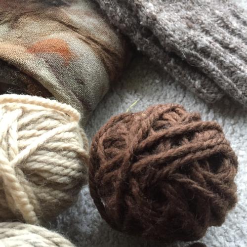 IP - Wool 5