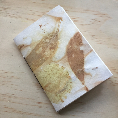IP Eco Dyed Book 1