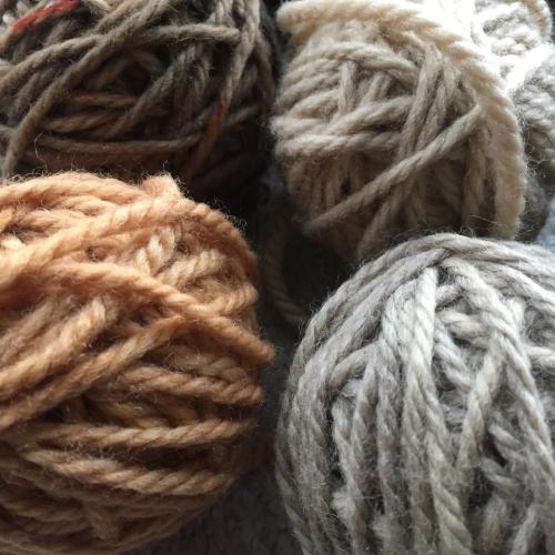 IP - Wool 2