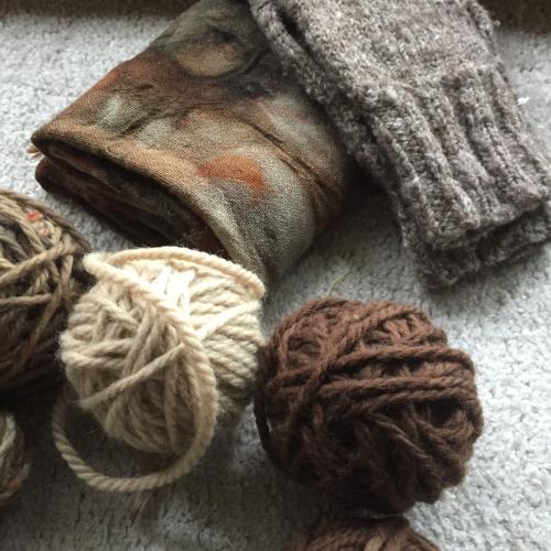 IP  - Wool 3