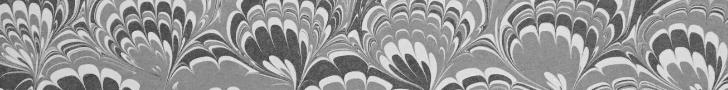 Pocketry - Skinny Border (728 x 90px) - Issue 2