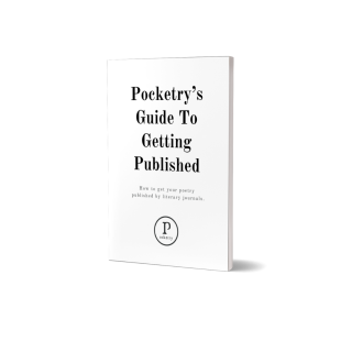 Pocketry Guides Instagram CTAs - Guide to Getting Published (without Link)